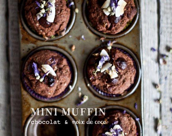 Mini-muffins au chocolat et à la noix de coco